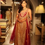 2014 Pakistani Bridal Couture Ceremony Apparel for Ladies (5)