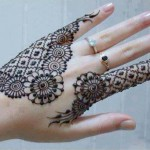 Amazing Eid Occasion Henna Fashions 2014 for Young Girls (6)