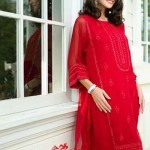 Beech Tree New Eid ul Fitr Collection 2014 for Ladies 3