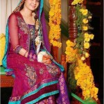 Famous Best Coloration Mehndi Attire 2014 (1)