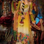 Famous Best Coloration Mehndi Attire 2014 (4)