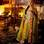 Famous Best Coloration Mehndi Attire 2014 (7)