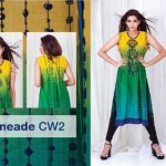 Sitere Stunning Lawn Outfits Selection 2014 For Eid Day (6)