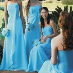 Top Lovely Brides Outfits For Big Day Celebration 2014 (2)