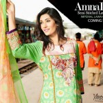 Amna Ismail Fancy Recognized Chicks Apparel Compilation 2014 (3)