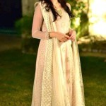 Beautiful Trendy Outstanding Big Event Attire 2014 for Females (5)