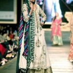 Beautiful Trendy Outstanding Big Event Attire 2014 for Females (6)
