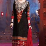 Bollywood Star Evelyn Sharma Churidar Suit Collection 2014 5