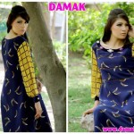 Females Everyday Use Outfits 2014 through Damak (1)