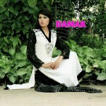 Females Everyday Use Outfits 2014 through Damak (2)