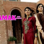 Females Everyday Use Outfits 2014 through Damak (3)