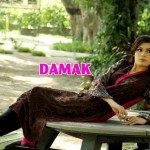 Females Everyday Use Outfits 2014 through Damak (4)