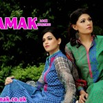 Females Everyday Use Outfits 2014 through Damak (6)