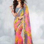 Indian Basic Multicolored Saree Stylish 2014-15 (1)
