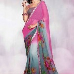Indian Basic Multicolored Saree Stylish 2014-15 (5)