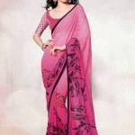 Indian Basic Multicolored Saree Stylish 2014-15 (6)