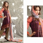 Ladies Middle Summer Time Use Selection 2014 through Shariq Fabrics (2)