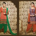 Many Current Punjabi Patiala Clothes Choice (4)