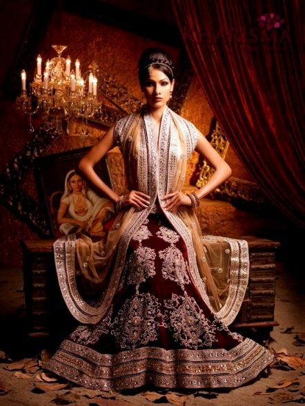 2014 Superb Indian Lehenga Concepts For Females (3)