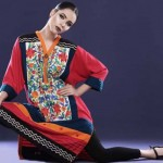 Big Eid Dresses Variety 2014 For Females  Cotton Ginny (2)