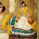 Bismi Boutique - Ethnic Indian Collections 2014 5 - Copy