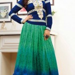 Bollywood's Actresses Georgette Dresses Collection 2014-15 6