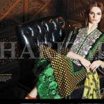 Charizma Eid Beautiful Clothes Collection 2014-15 for Ladies (6)