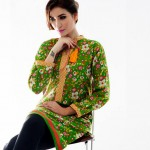 Different Colorfull Aalishan Eid Party Outfits 2014 for Female  Bonanza (5)