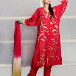 Eid Function Women Beautiful Styles Series 2014 Phulkari By Taana Baana (2)