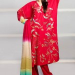 Eid Function Women Beautiful Styles Series 2014 Phulkari By Taana Baana (3)
