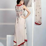 Eid Function Women Beautiful Styles Series 2014 Phulkari By Taana Baana (5)