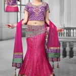 Fresh Selection Fashion Utsav Tendency Indian Lehenga Choli 2014-15 For Ladies (2)