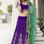 Fresh Selection Fashion Utsav Tendency Indian Lehenga Choli 2014-15 For Ladies (4)