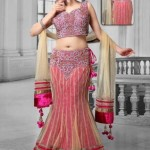 Fresh Selection Fashion Utsav Tendency Indian Lehenga Choli 2014-15 For Ladies (5)