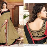 Hottest Indian Fashion Padded Blouses Storing 2014-15 For Ladies (1)