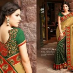Hottest Indian Fashion Padded Blouses Storing 2014-15 For Ladies (2)