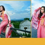 Kalyan Females Special Eid Lawn Outfits Style 2014 (3)