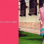 Limelight Middle of the Summer Months Deluxe Outfits 2014 For Females (6)