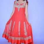 Lovely Festival Fashionable Anarkali Outfits Variety 2014 For Females (2)
