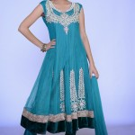 Lovely Festival Fashionable Anarkali Outfits Variety 2014 For Females (3)
