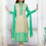 Madhubala's Exclusive Collection 2014-15 4