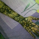 Mehndi Designs for Hands 2014 7