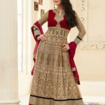 Priety Zinta's Attractive Outfits 2014