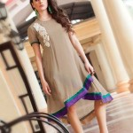 Quality Winter Fancy Small Kurti Concepts 2014-15 For Females (6)