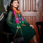Shirin Hassan Females Special Eid Occasion Modern Outfits 2014 (5)