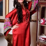 Shirin Hassan Females Special Eid Occasion Modern Outfits 2014 (6)