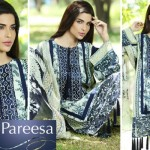 Trendy Pareesa Bakra Eid Have on Outfits 2014 by Chen One (4)