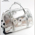 Beautiful Handbags collection 2014 6