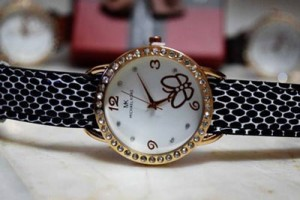 Beautiful Watches Collection 2014 10