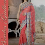 Bridal and Wedding Sarees Collection 2014-15 4